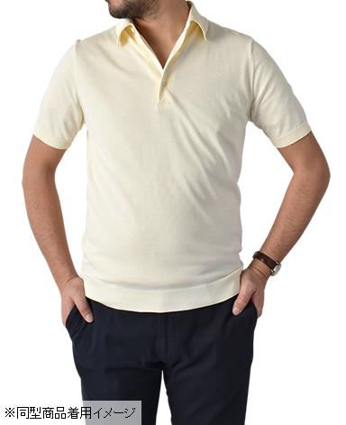 黄金棉 30G针织Polo衫