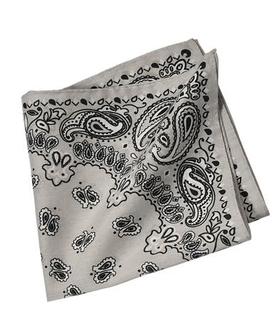 コットンシルクポケットチーフ/イタリア製