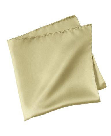 ポケットチーフ/シルク